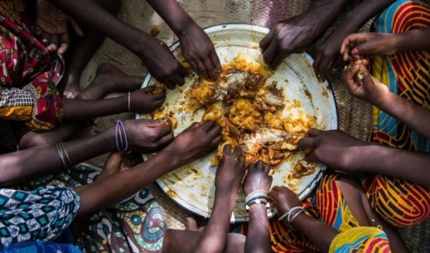 فناوری ها در خدمت تامین غذای جمعیت جهان قرار می گیرند