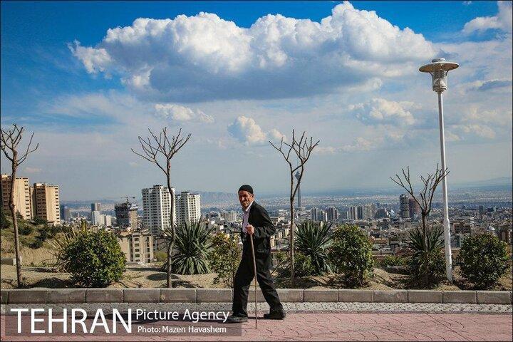 سهم تهران از هوای پاک؛ 15 روز